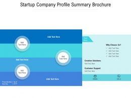 Startup Company Profile Summary Brochure