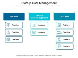Startup Cost Management Ppt Powerpoint Presentation Pictures Summary Cpb