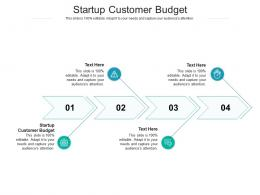Startup Customer Budget Ppt Powerpoint Presentation Pictures Background Images Cpb