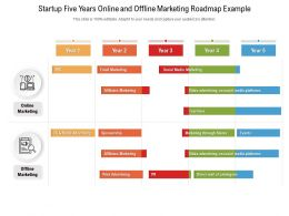Startup Five Years Online And Offline Marketing Roadmap Example