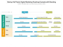 Startup Half Yearly Digital Marketing Roadmap Example With Branding