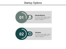 Startup Options Ppt Powerpoint Presentation Model Graphics Design Cpb
