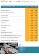 Statement Of Profit Or Loss And Other Comprehensive Income Template 30 Report Infographic PPT PDF Document