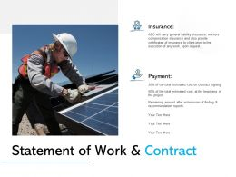 Statement Of Work And Contract Ppt Powerpoint Presentation Icon