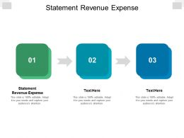 Statement Revenue Expense Ppt Powerpoint Presentation Outline Background Cpb