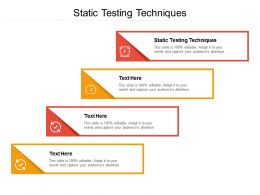 Static Testing Techniques Ppt Powerpoint Presentation Styles Guidelines Cpb