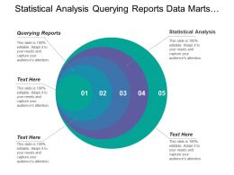 Statistical Analysis Querying Reports Data Marts Information Providers