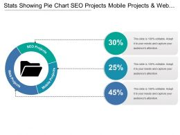 Stats Showing Pie Chart Seo Projects Mobile Projects And Web Projects