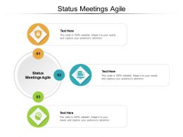 Status Meetings Agile Ppt Powerpoint Presentation Outline Icons Cpb