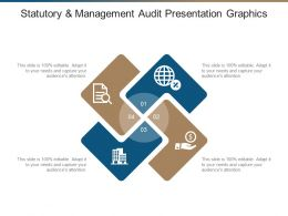 Statutory And Management Audit Presentation Graphics