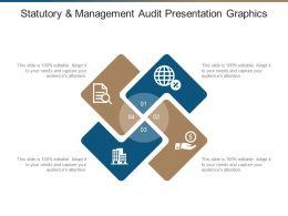 Statutory And Management Audit Presentation Graphics