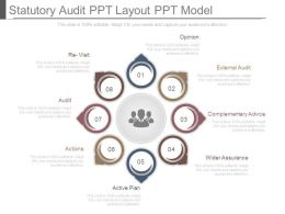 Statutory Audit Ppt Layout Ppt Model