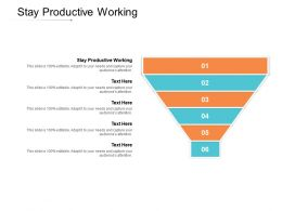 Stay Productive Working Ppt Powerpoint Presentation Professional Smartart Cpb