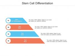 Stem Cell Differentiation Ppt Powerpoint Presentation File Grid Cpb