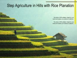 Step Agriculture In Hills With Rice Planation