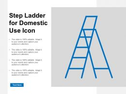 Step Ladder For Domestic Use Icon