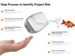 Step Process To Identify Project Risk