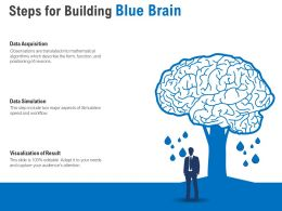 Steps For Building Blue Brain