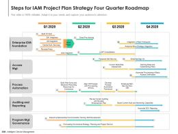 Steps For IAM Project Plan Strategy Four Quarter Roadmap