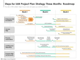 Steps For IAM Project Plan Strategy Three Months Roadmap