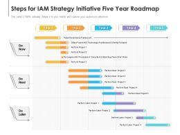 Steps For IAM Strategy Initiative Five Year Roadmap