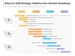 Steps For IAM Strategy Initiative Four Quarter Roadmap