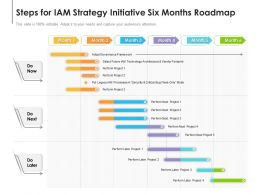 Steps For IAM Strategy Initiative Six Months Roadmap