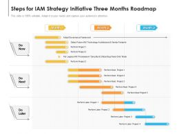 Steps For IAM Strategy Initiative Three Months Roadmap