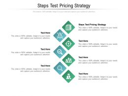Steps Test Pricing Strategy Ppt Powerpoint Presentation Visual Aids Pictures Cpb