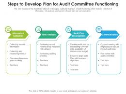 Steps To Develop Plan For Audit Committee Functioning