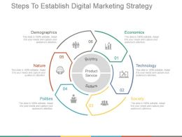 Steps To Establish Digital Marketing Strategy Ppt Examples