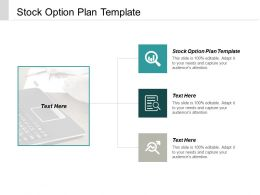 Stock Option Plan Template Ppt Powerpoint Presentation Ideas Graphics Cpb