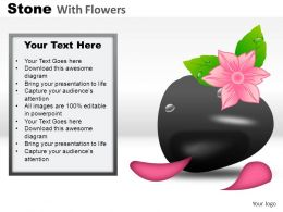 Stones With Flowers Powerpoint Presentation Slides