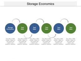 Storage Economics Ppt Powerpoint Presentation Professional Format Ideas Cpb