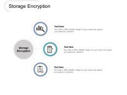 Storage Encryption Ppt Powerpoint Presentation Icon Sample Cpb