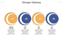 Storage Gateway Ppt Powerpoint Presentation Infographic Template Graphics Pictures Cpb