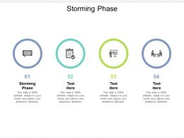 Storming Phase Ppt Powerpoint Presentation Model Topics Cpb