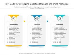 STP Model For Developing Marketing Strategies And Brand Positioning