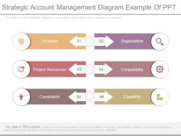 Strategic Account Management Diagram Example Of Ppt