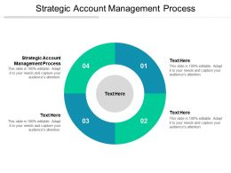 Strategic Account Management Process Ppt Powerpoint Presentation Layouts Vector Cpb