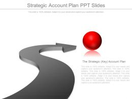 Strategic Account Plan Ppt Slides