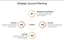 Strategic Account Planning Ppt Powerpoint Presentation Infographic Template Design Cpb