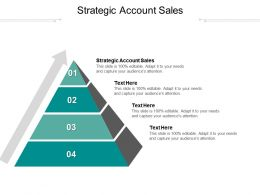 Strategic Account Sales Ppt Powerpoint Presentation Summary Example Cpb
