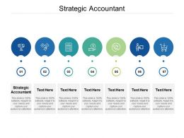 Strategic Accountant Ppt Powerpoint Presentation Outline Background Designs Cpb
