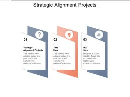 Strategic Alignment Projects Ppt Powerpoint Presentation Outline Icons Cpb