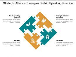 Strategic Alliance Examples Public Speaking Practice Evaluation Performance Cpb