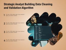 Strategic Analyst Building Data Cleaning And Validation Algorithm