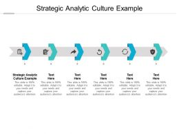Strategic Analytic Culture Example Ppt Powerpoint Presentation Model Skills Cpb