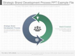 Strategic Brand Development Process Ppt Example File