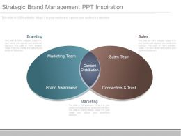 Strategic Brand Management Ppt Inspiration